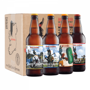 Core Mixed Beer Case